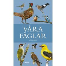Våra Fåglar