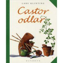 Castor odlar (liten)