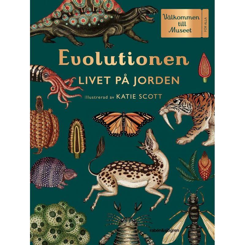 Evolutionen Livet på jorden