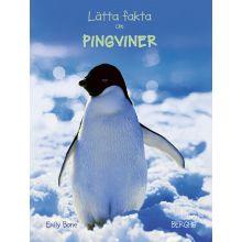 Lätta fakta om Pingviner